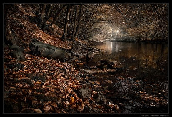 • Herbstlich(t) •