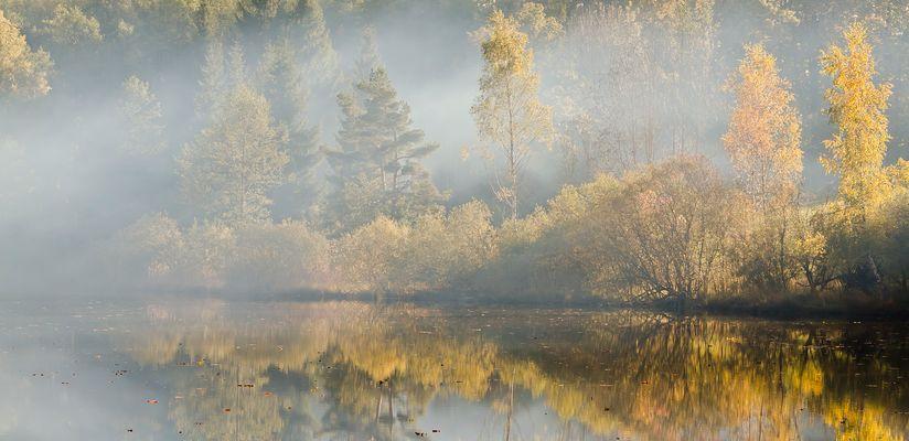 """"""" Herbstlicht """""""
