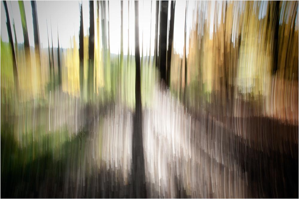 .. Herbst.licht ..