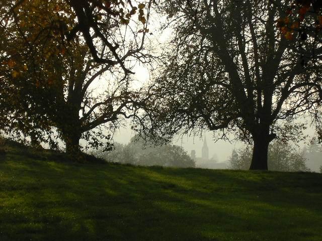 Herbstlicht nach der Sommerzeit