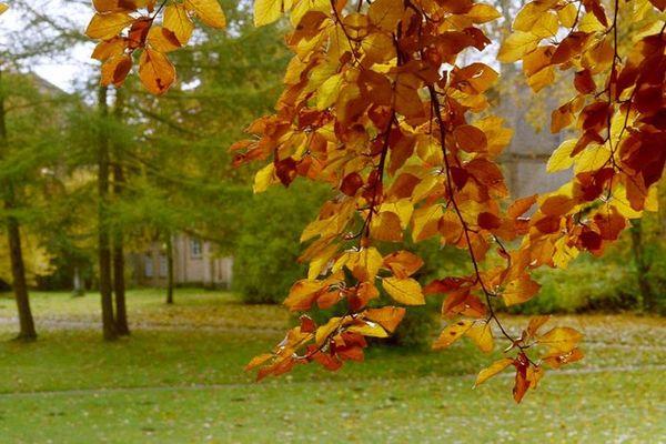 Herbstlich(t)3