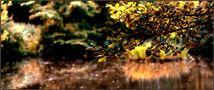 � Herbstlichter �.. von Viktor-Roman