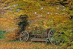 """ Herbstlied """