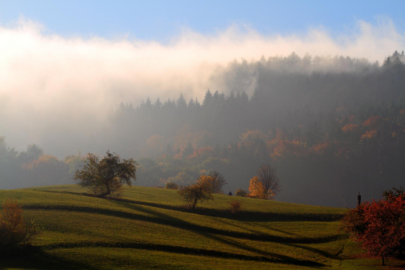 Herbstlinien
