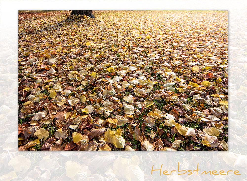 Herbstmeere II