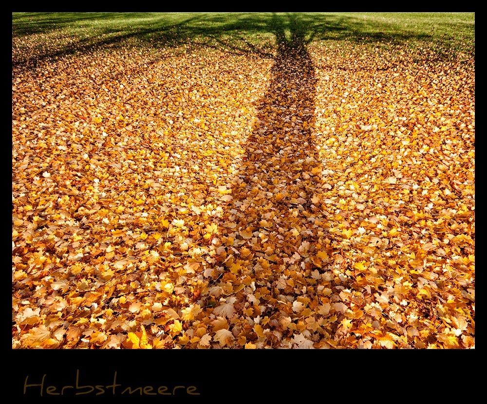 Herbstmeere III