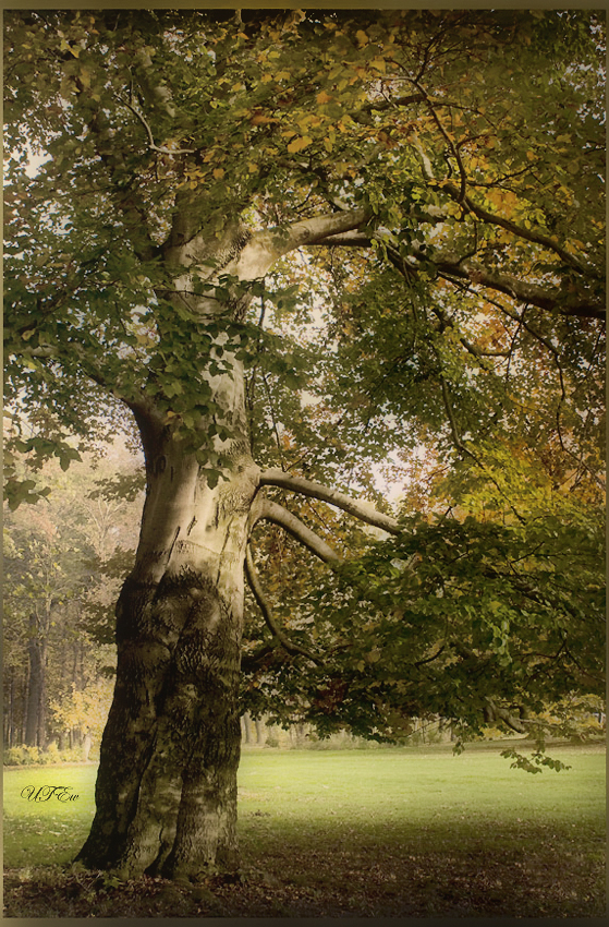 Herbstmomente