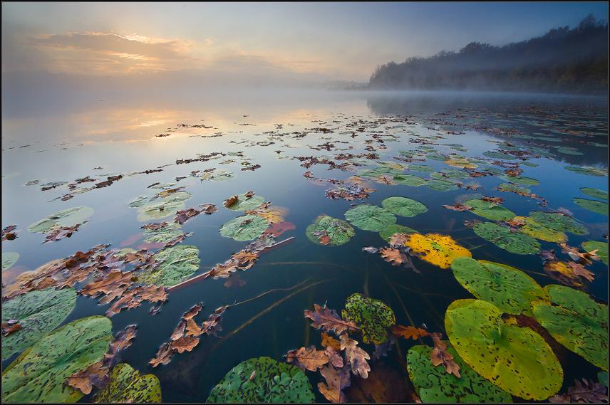 Herbstmoren am See