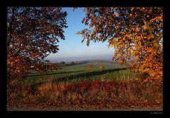 Herbstmorgen - 7