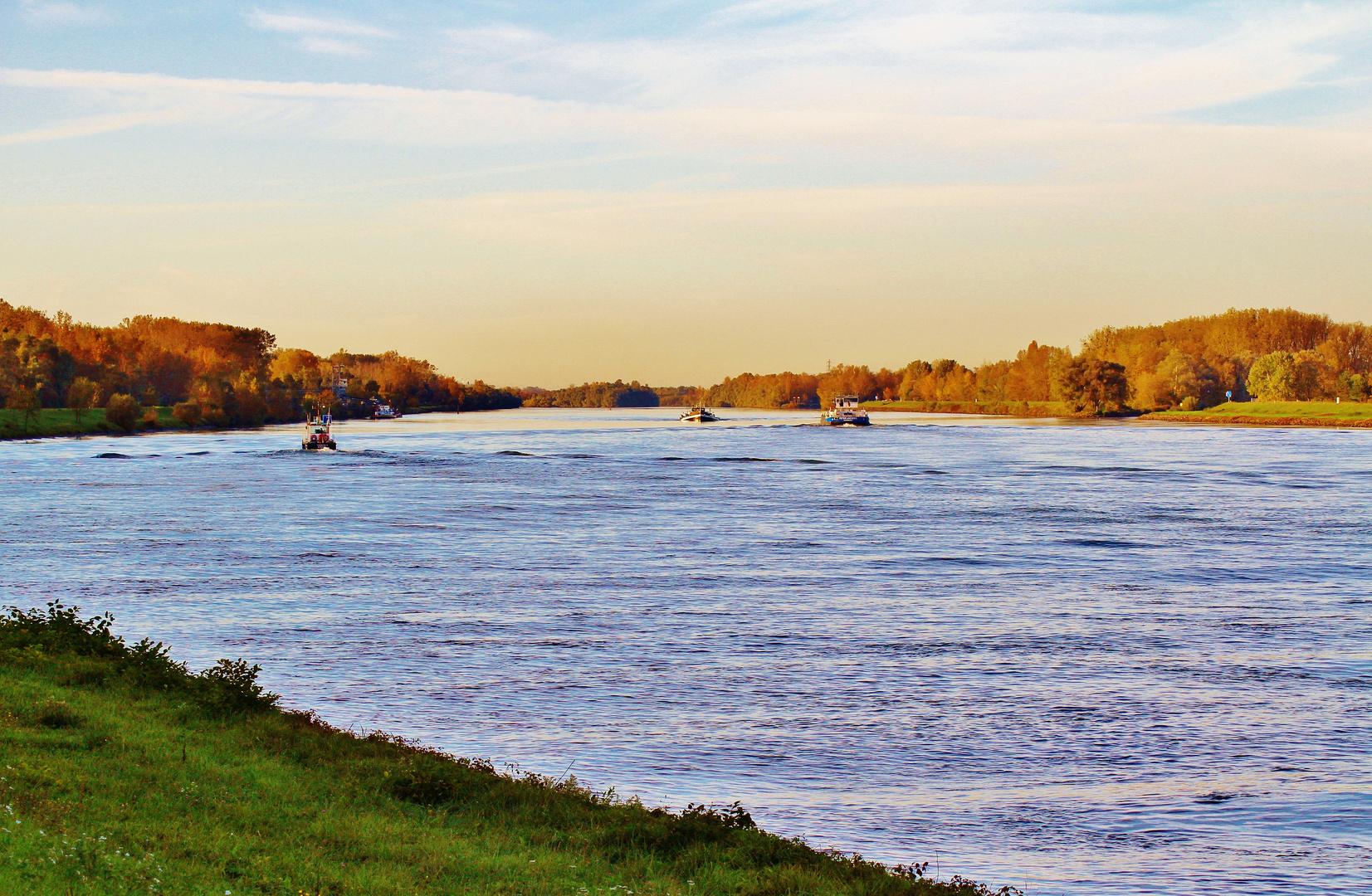 Herbstmorgen am großen Fluss