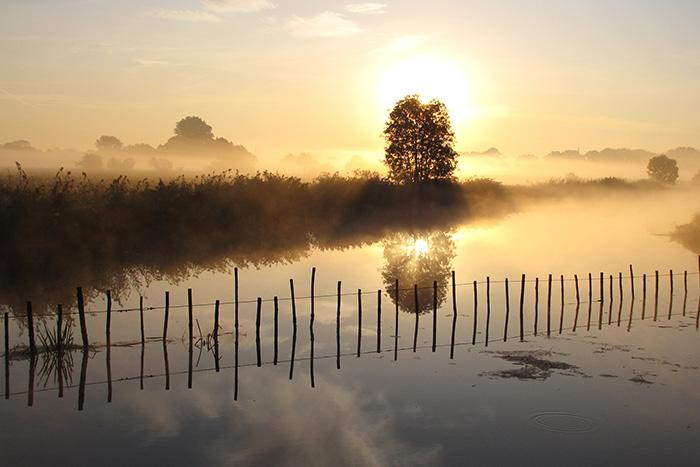 Herbstmorgen im Dannenberger Werder