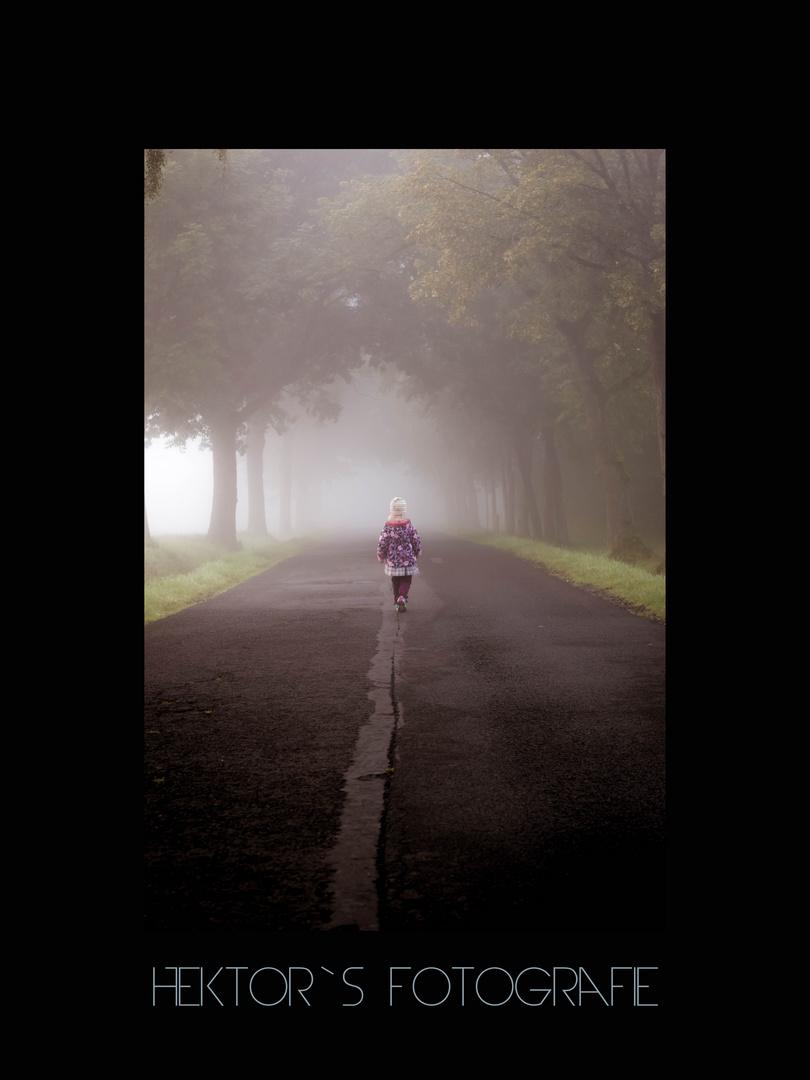 Herbstmorgen im Nebel