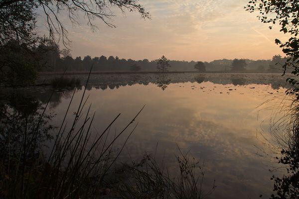 Herbstmorgen im Schwattet Gatt