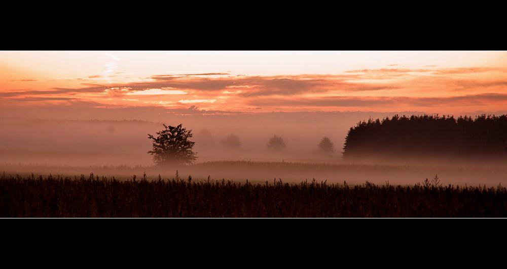 Herbstmorgen im Wendland