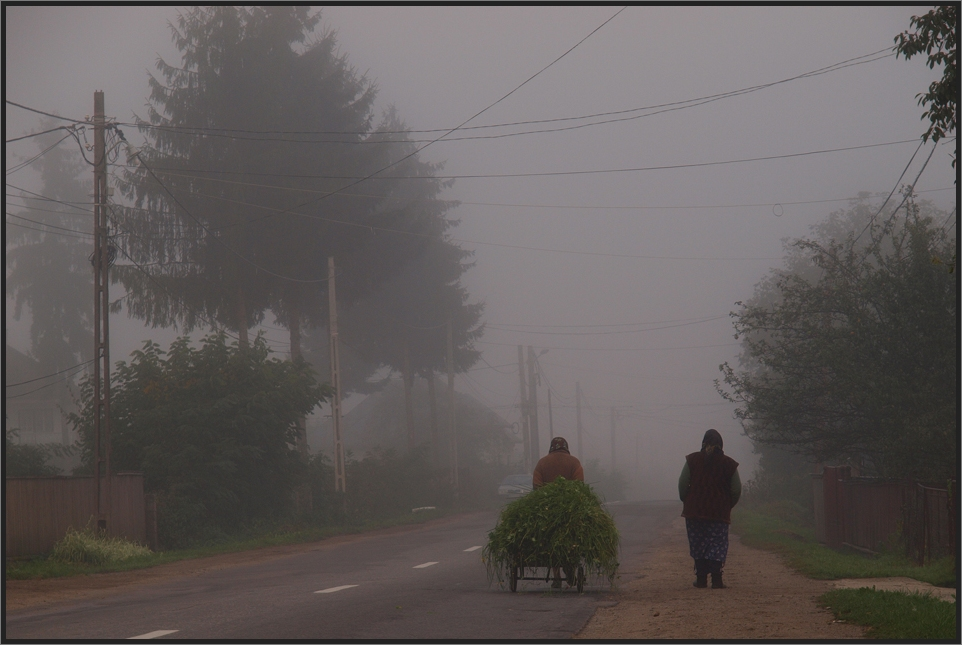 Herbstmorgen in Viseu de Sus (Menschen in der Maramures III)