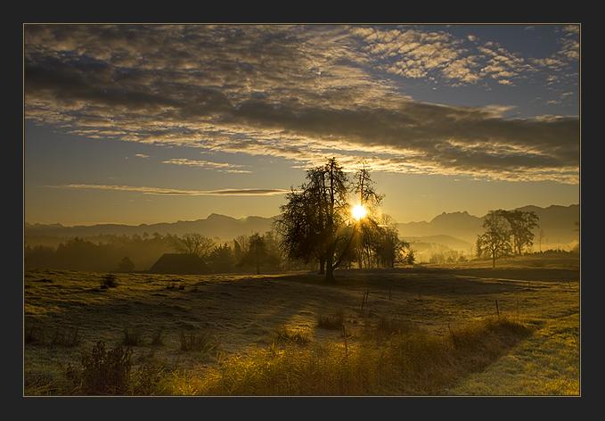Herbstmorgen lll
