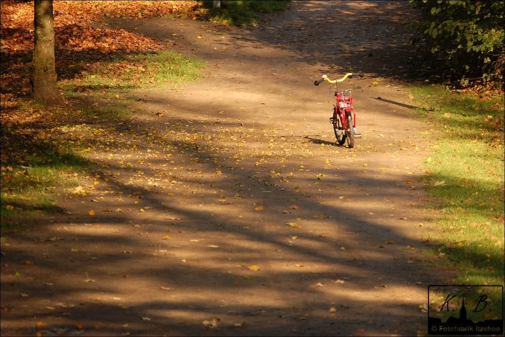 Herbstmorgen Teil 2