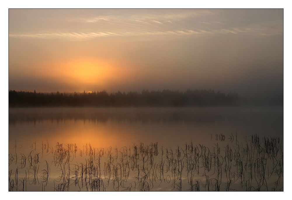 Herbstmorgen_in_Lappi