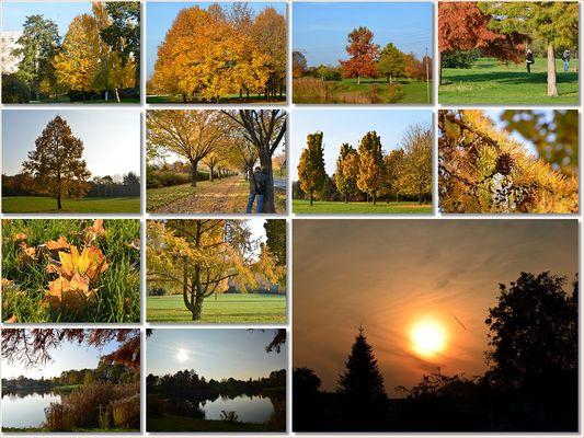 Herbstnachmittag ...