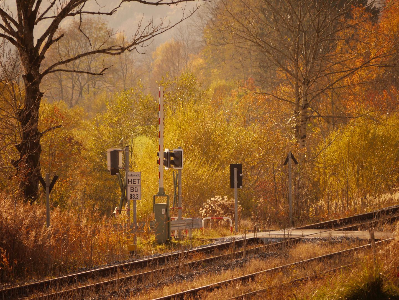 Herbstnachmittag im Allgäu