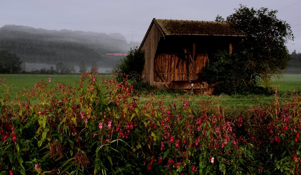 Herbstnähe ...