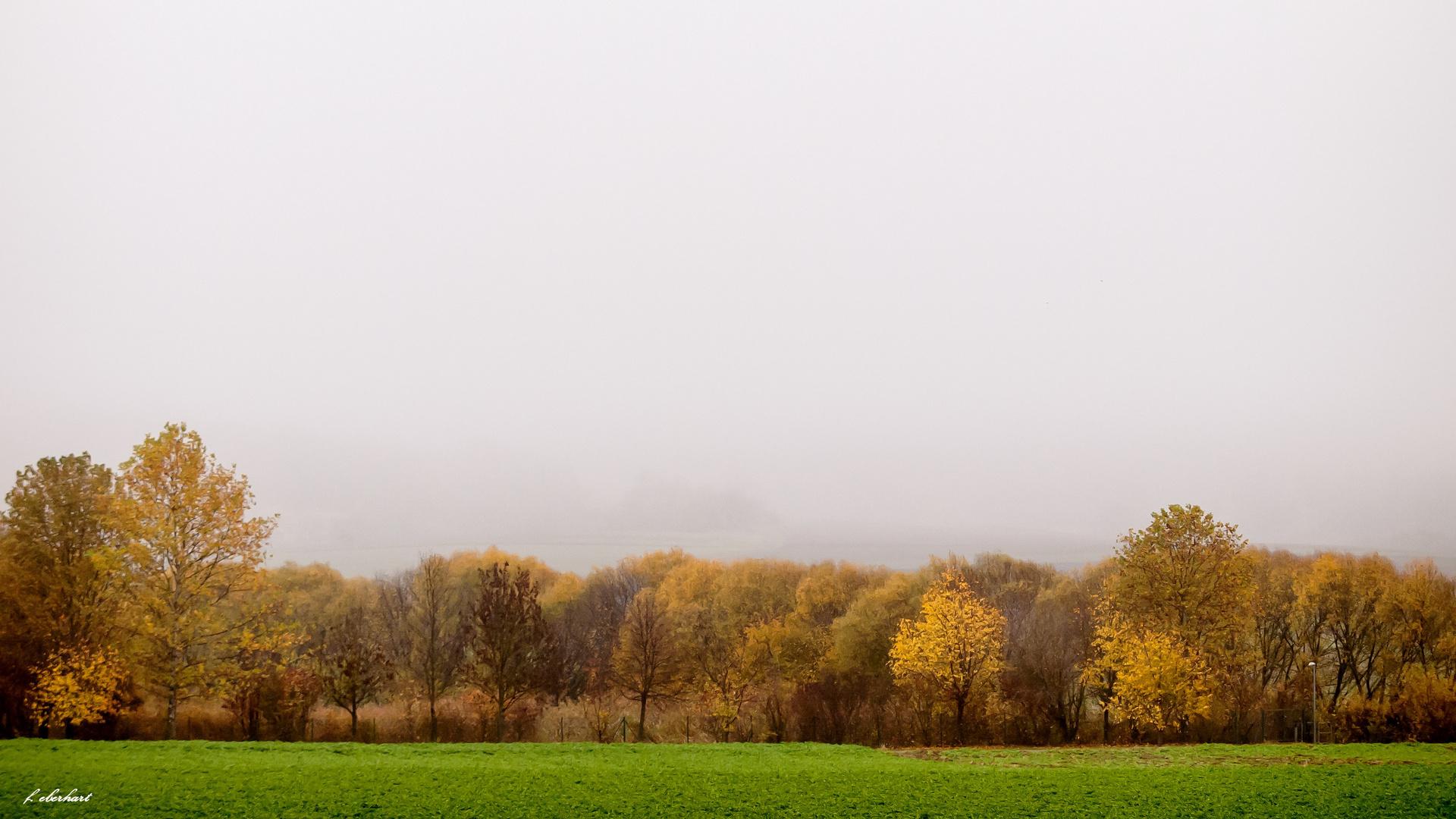 Herbstnebel im Schidatal