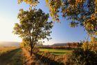 Herbstpaziergang