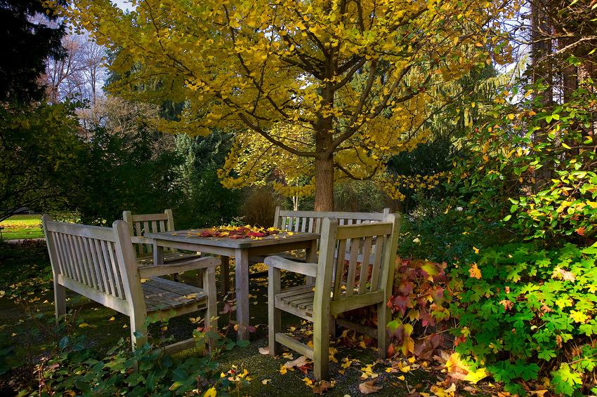 Herbstplätze2