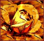 """Herbstrose"""