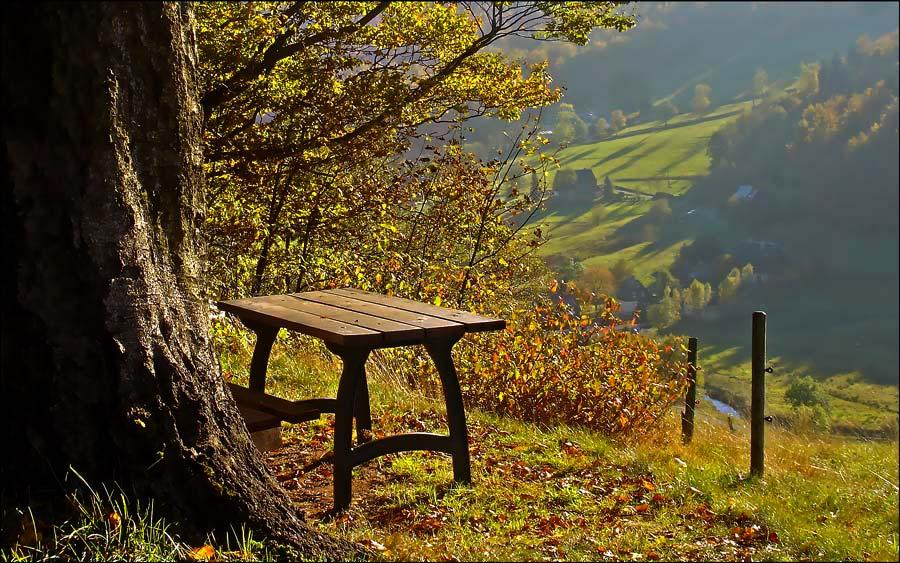 Herbstrückblick...