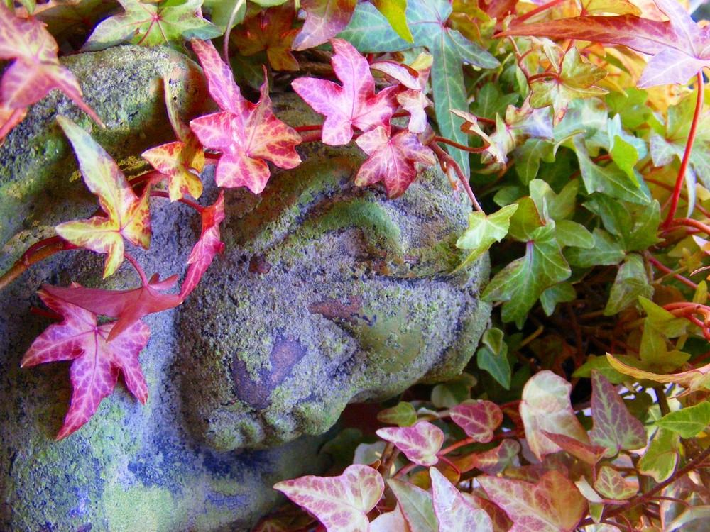 Herbstruhe ...