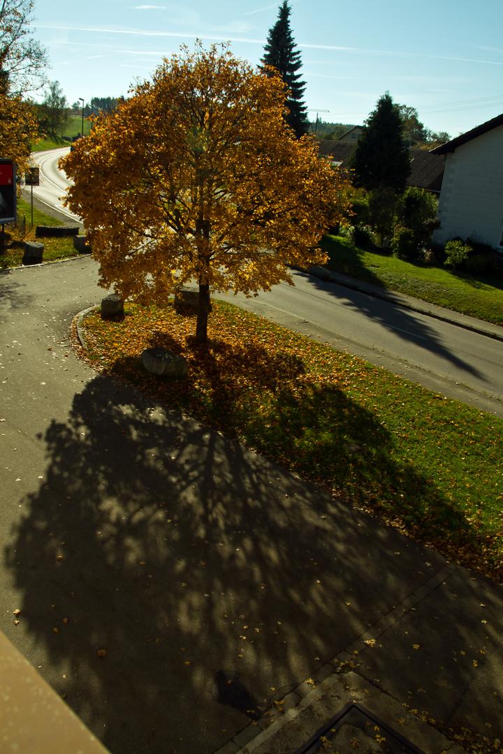 Herbstschatten
