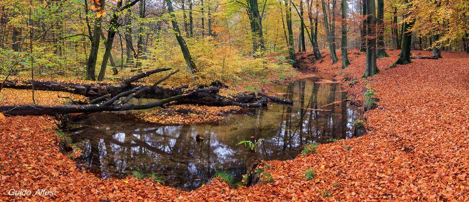 Herbstschleife
