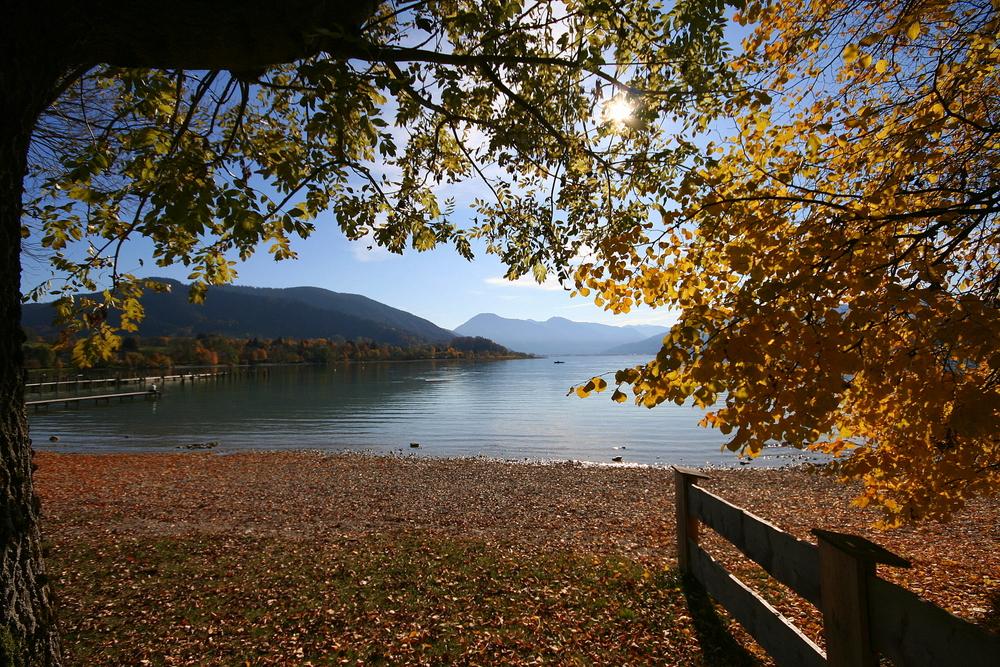 Herbstsimmung II