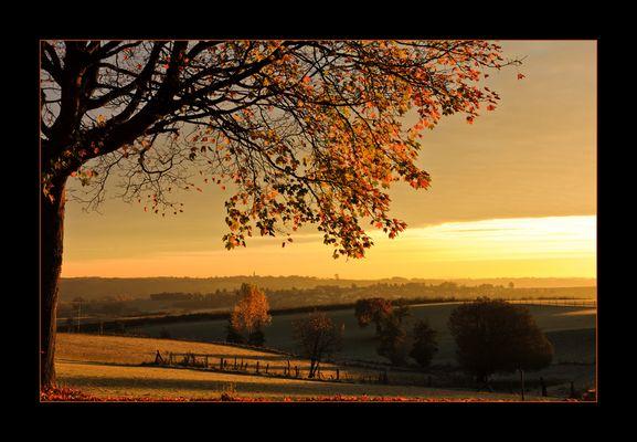 Herbstsonne #2