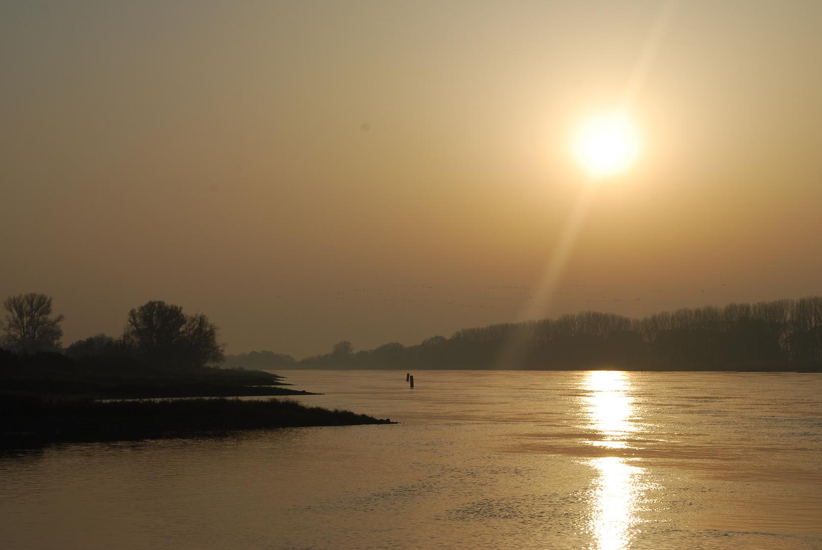 Herbstsonne an der Elbe