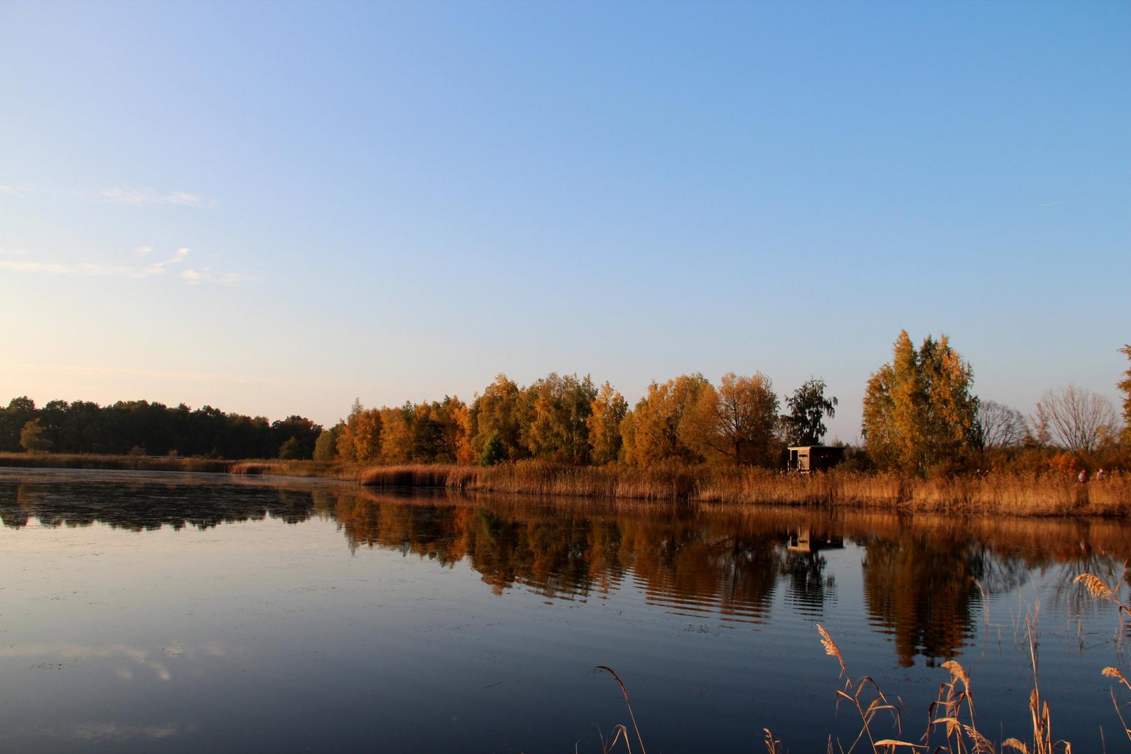 Herbstsonne im Naturschutzgebiet