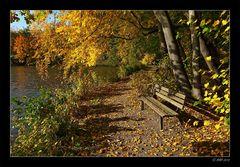 Herbstsonne tanken