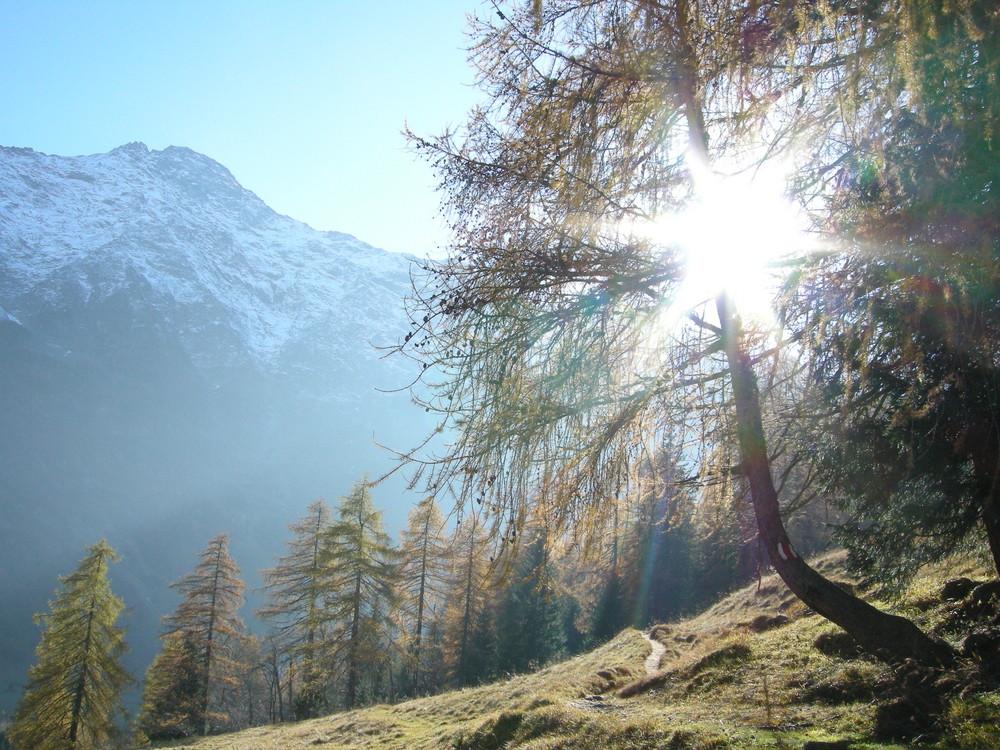 Herbstsonne - Tessiner Alpen bei Dalpe