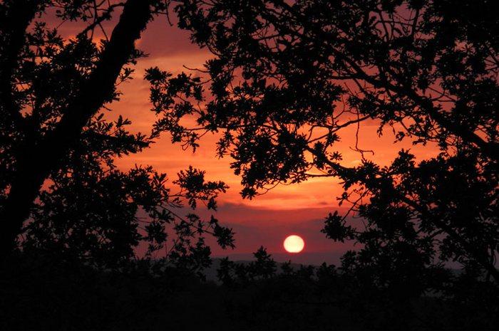 Herbstsonne über der Toskana