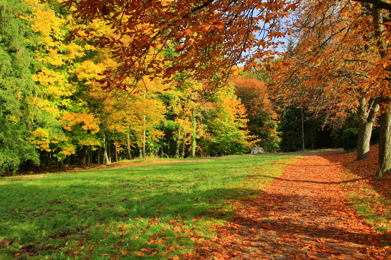 Herbstsonntag im Park Wechselburg