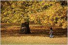 Herbstspaziergang [2]