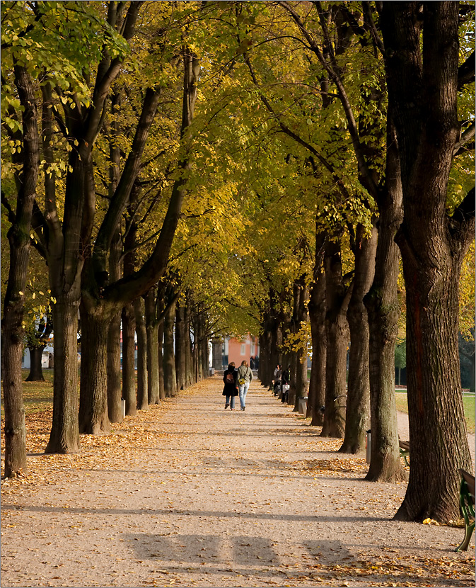 Herbstspaziergang....