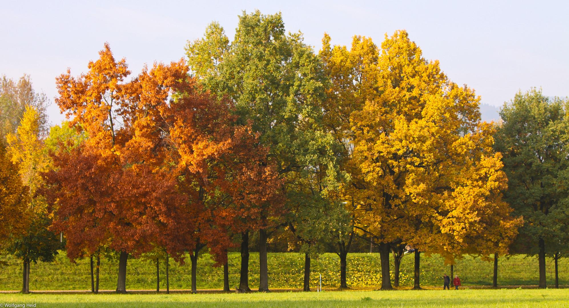 Herbstspaziergang.