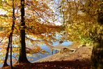 Herbstspaziergang am Wolfsee - Steg