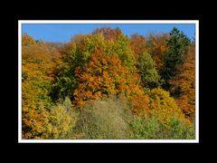 Herbstspaziergang Burgkirchen/Alz 02