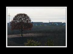 Herbstspaziergang Burgkirchen/Alz 04