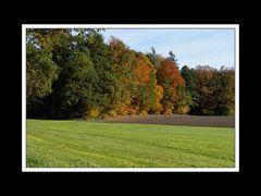 Herbstspaziergang Burgkirchen/Alz 05