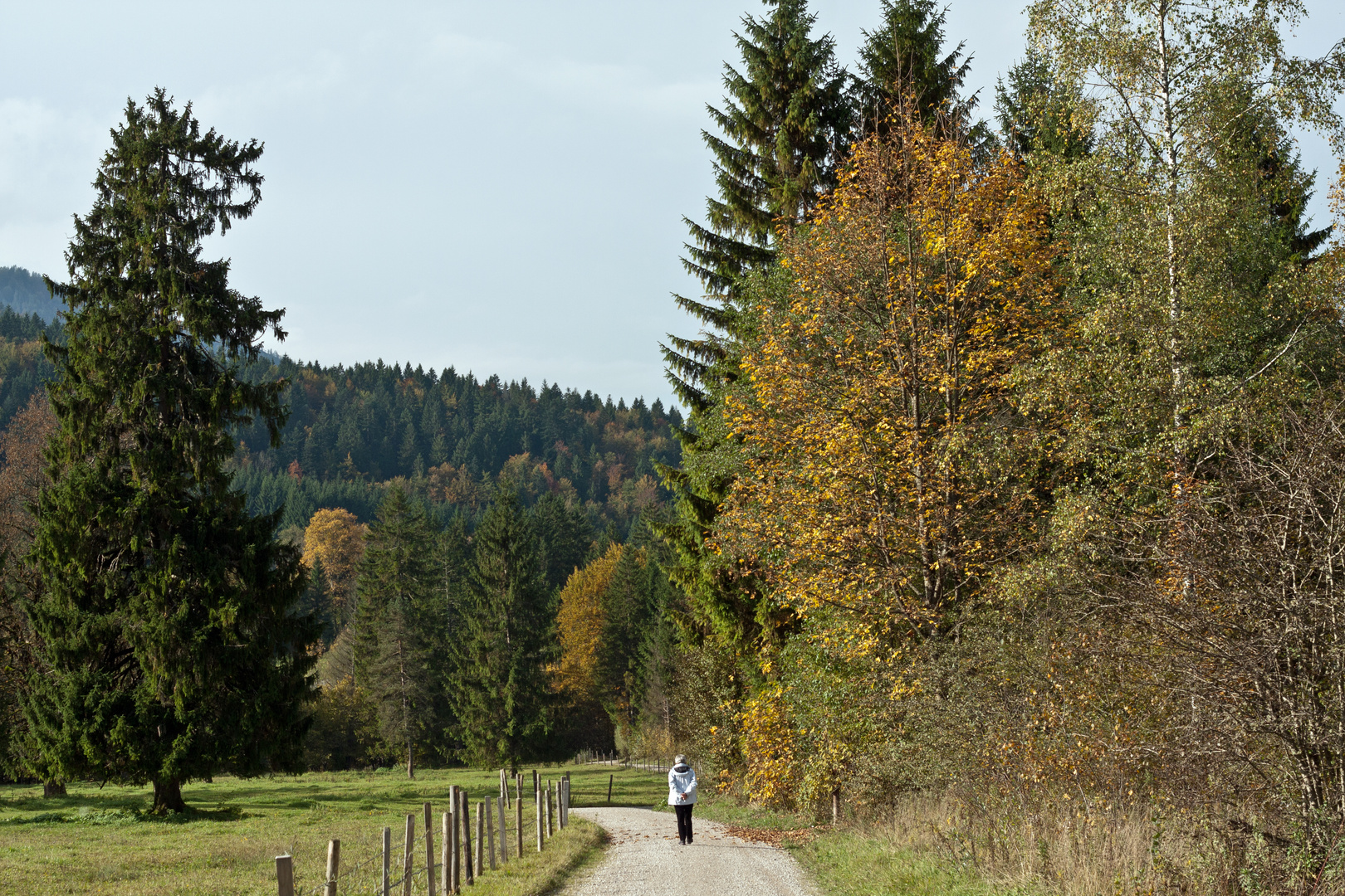 Herbstspaziergang -