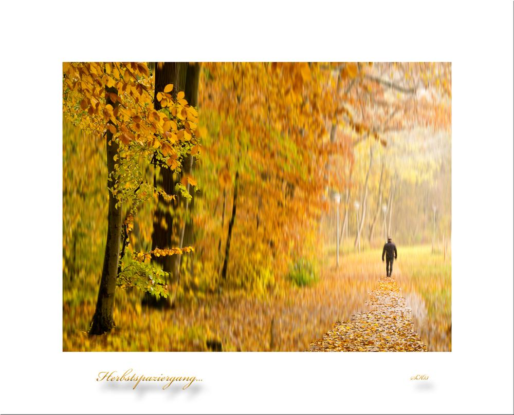 Herbstspaziergang...